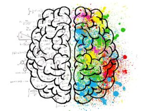 brain 1627467669