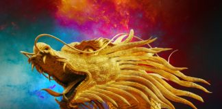 dragon 1627447092